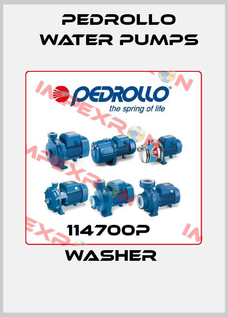 Pedrollo Water Pumps-114700P   WASHER  price