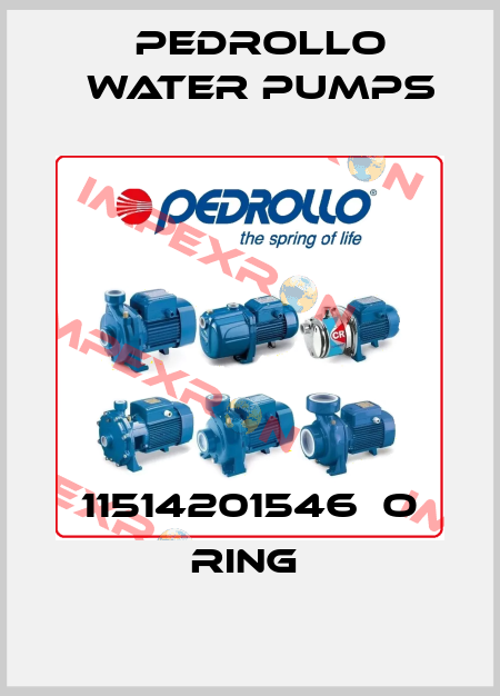 Pedrollo Water Pumps-11514201546  O RING  price