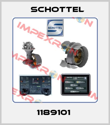 Schottel-1189101  price
