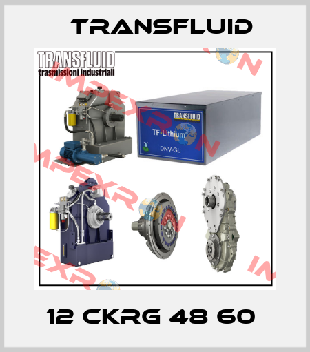 Transfluid-12 CKRG 48 60  price