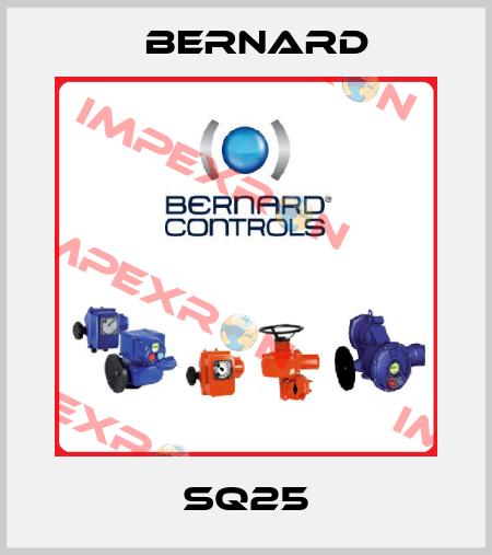 Bernard-SQ25 price